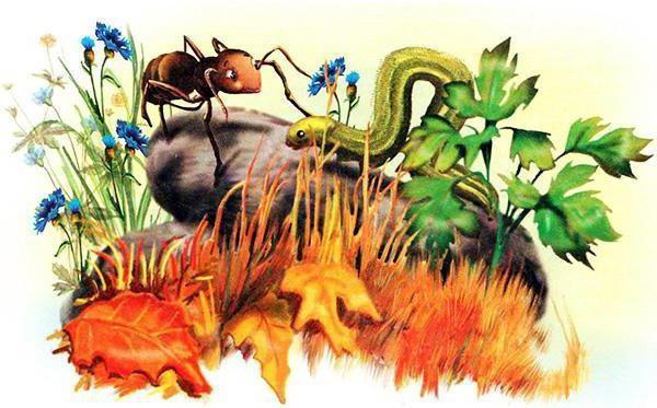 Краткое содержание Бианки Как муравьишка домой спешил за 2 минуты пересказ сюжета