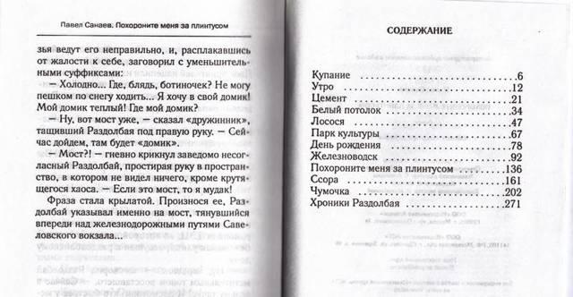 Краткое содержание Санаев Похороните меня за плинтусом за 2 минуты пересказ сюжета