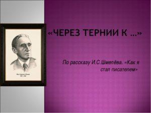 Краткое содержание рассказов Ивана Шмелёва за 2 минуты