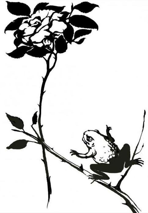 Краткое содержание Гаршин Сказка о жабе и розе за 2 минуты пересказ сюжета
