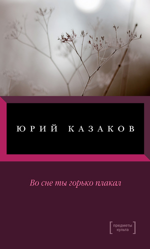 Краткое содержание Казаков Во сне ты горько плакал за 2 минуты пересказ сюжета