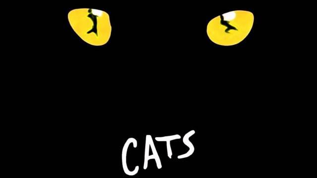 Краткое содержание мюзикла Кошки Уэббера за 2 минуты пересказ сюжета