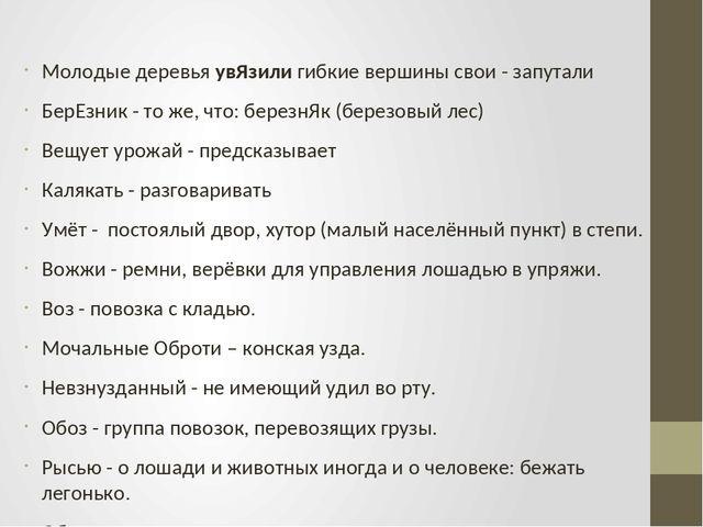 Краткое содержание Буран Аксакова за 2 минуты пересказ сюжета