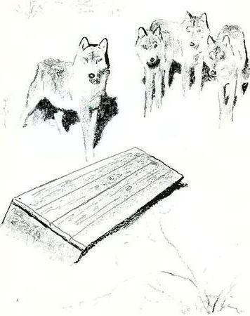 Краткое содержание Таинственный ящик Пришвина за 2 минуты пересказ сюжета